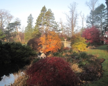 The stream at the Halifax Public Gardens, continuing it's fall display.