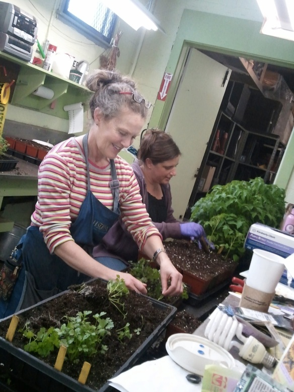 Gardeners preparing vegetables for the Open House