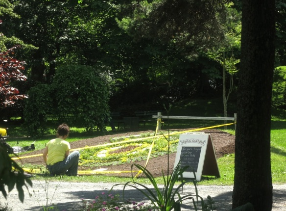 Gardener working on the carpet bed at the Halifax Public Gardens