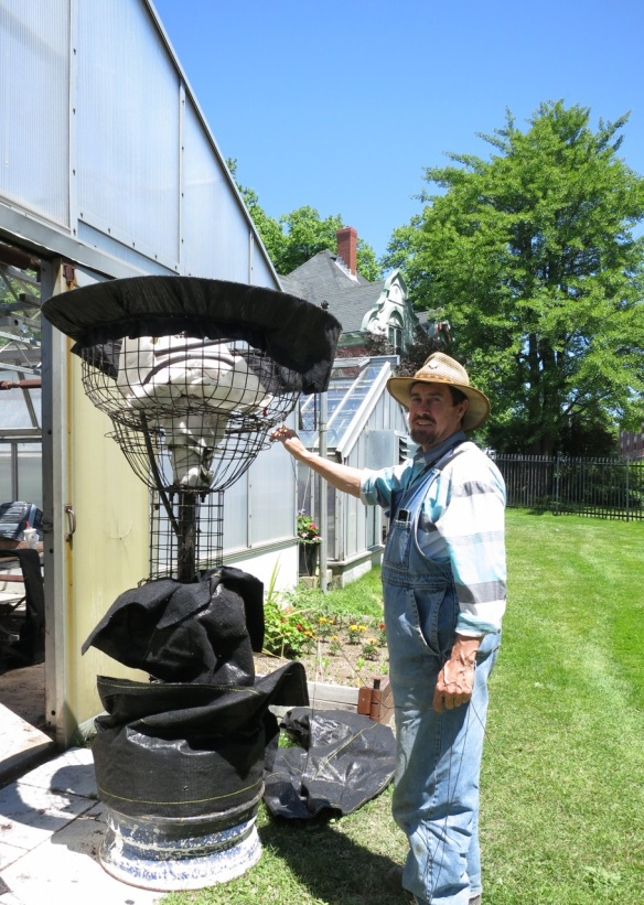 Glen prepping the 'skin' on the living urn at the Halifax Public Gardens