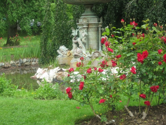 Roses by the Boer War Memorial fountain