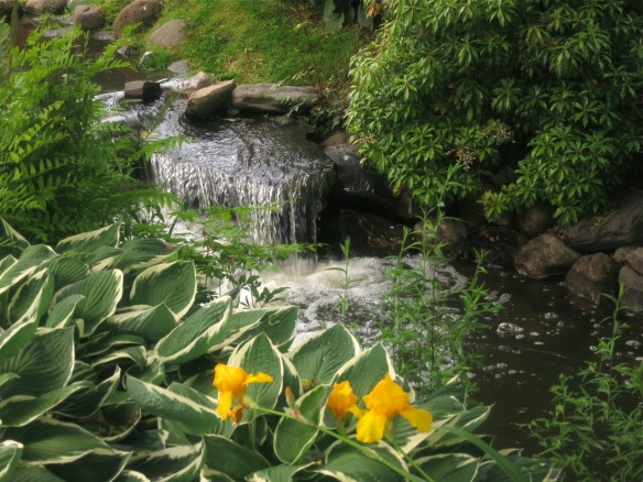 Streambed at the Halifax Public Gardens