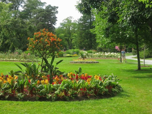 Flower beds at the Halifax Public Gardens
