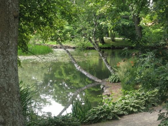 Griffin's Pond at the Halifax Public Gardens