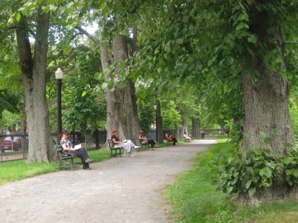 Lunchtime at the Halifax Public Gardens