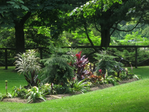 Tropical Foliage Bed at the Halifax Public Gardens