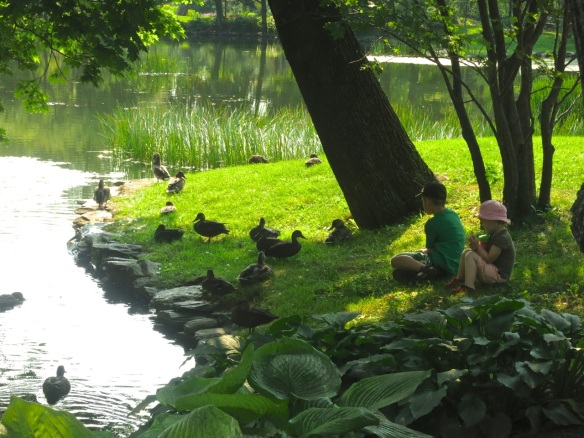 Children watching the ducks at the Halifax Public Gardens