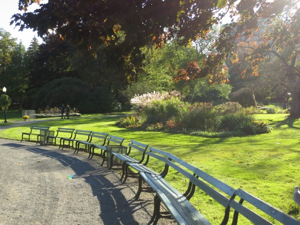 Afternoon sun at the Halifax Public Gardens
