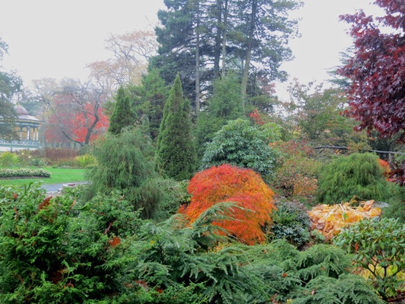 Fall in the rain at the Halifax Public Gardens