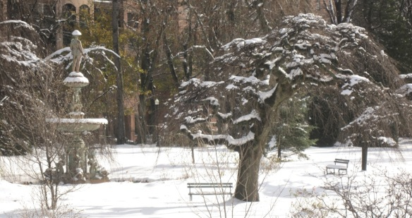 November 24, 2011 at the Halifax Public Gardens