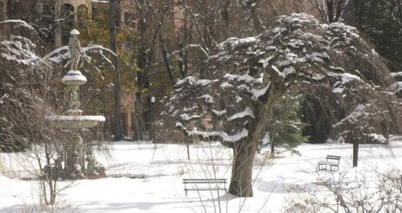 November 24, 2011 at the Halifax Public Gardens