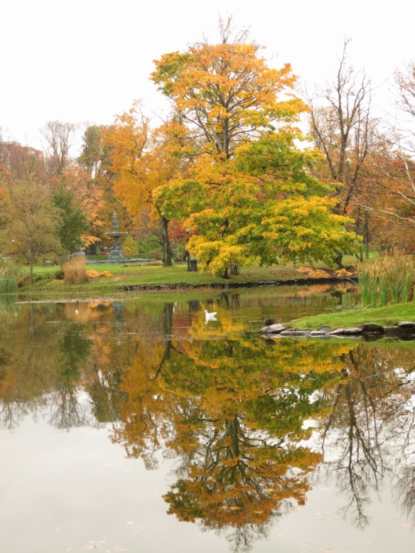 Reflections by a great dame at the Halifax Public Gardens