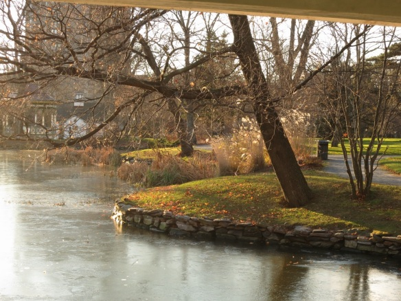 A frozen Griffins pond