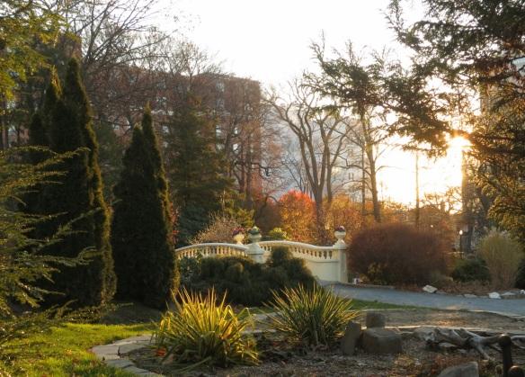 Morning on the upper bridge of the Halifax Public Gardens