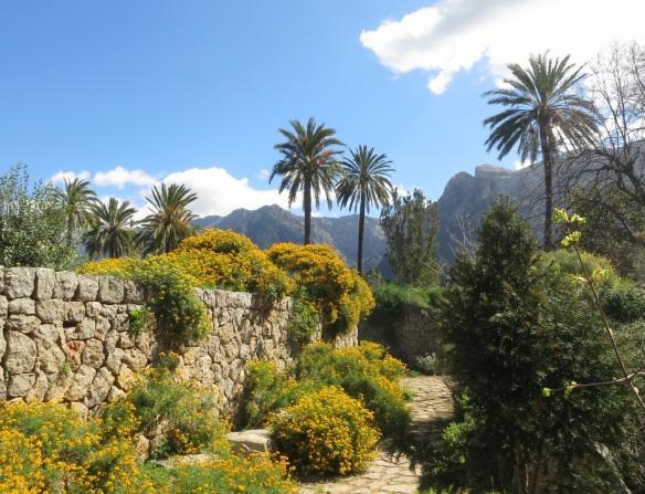 Botanical Garden in Soller, Mallorca