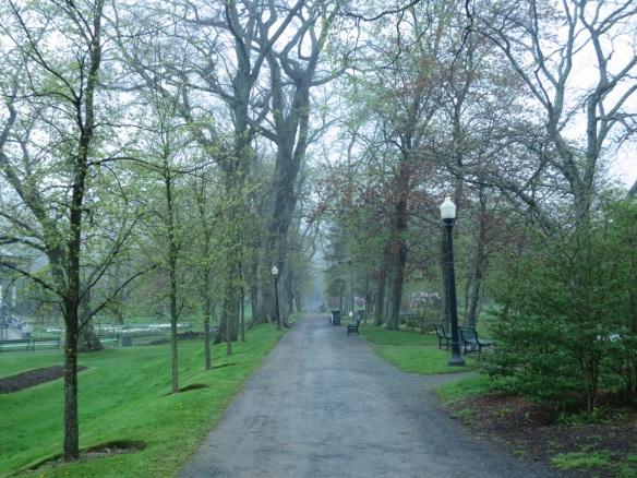 The Grande Alleé at the Halifax Public Gardens