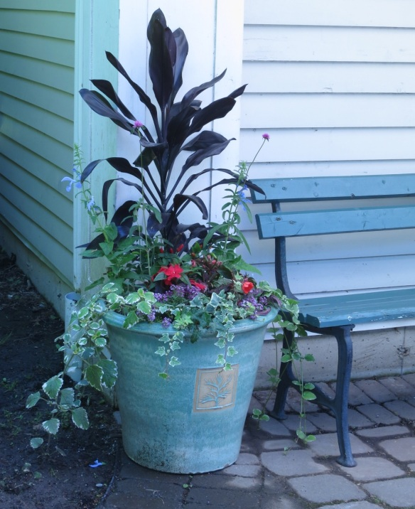 Celebrity Gardener 3