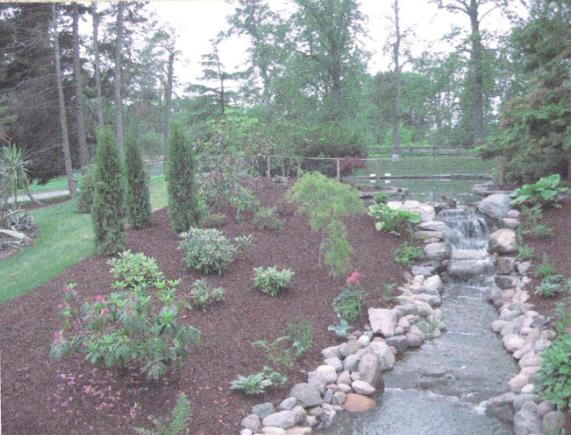 Post Juan restoration streambed at the Halifax Public Gardens