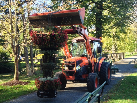 Living Urn being moved at the Halifax Public Gardens
