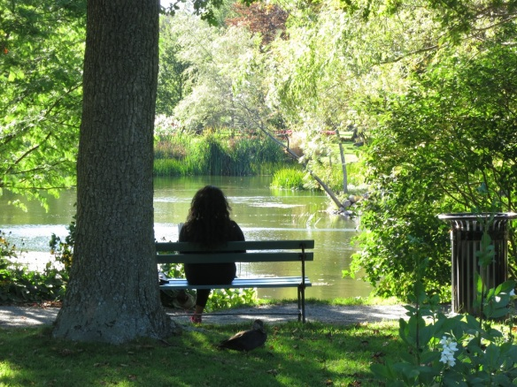 Quiet time at the Halifax Public Gardens