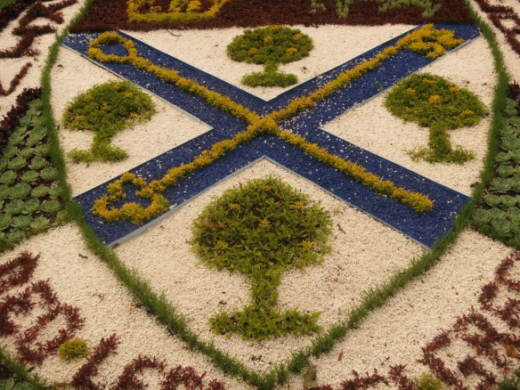 Close up of one of the carpet beds at the Halifax Public Gardens