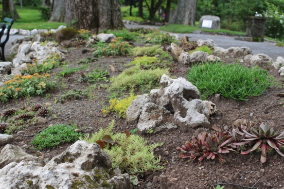 Succulent plant bed at the Halifax Public Gardens
