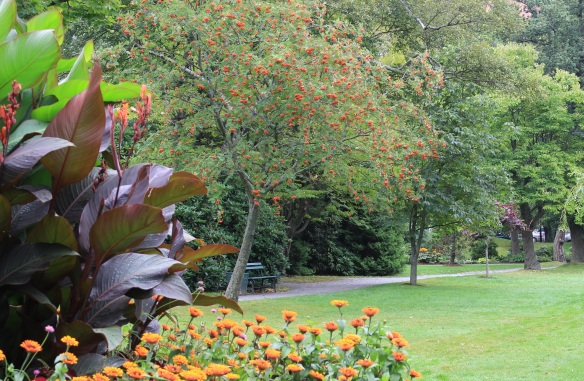 A fall vignette at the Halifax Public Gardens