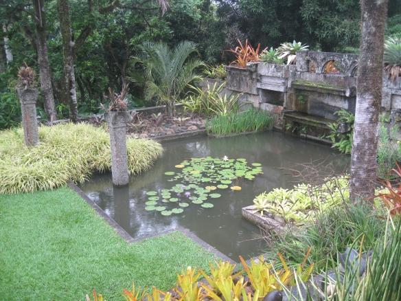 A water garden at Sítio Burle Marx, Rio de Janeiro.
