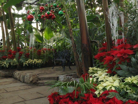Allan Gardens conservatory getting ready for the Holiday Season