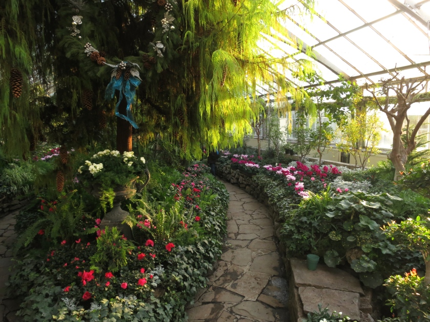 One of the greenhouses at Allan Gardens Conservatory