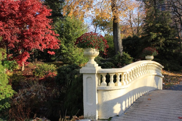 Upper bridge in fall at the Halifax Public Gardens