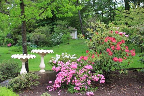 Powers' memorial bird baths at the Halifax Public Gardens