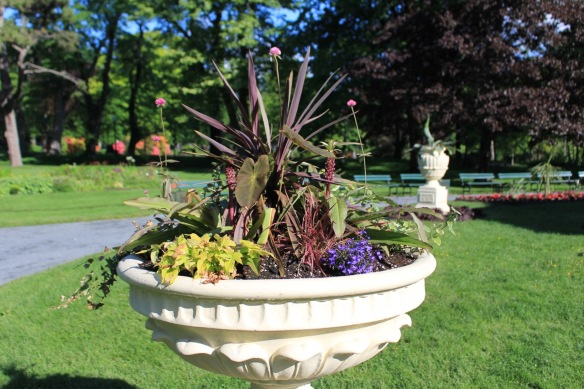 Foliage plants predominate in one of the urns around the bandstand at the Halifax Public Gardens.