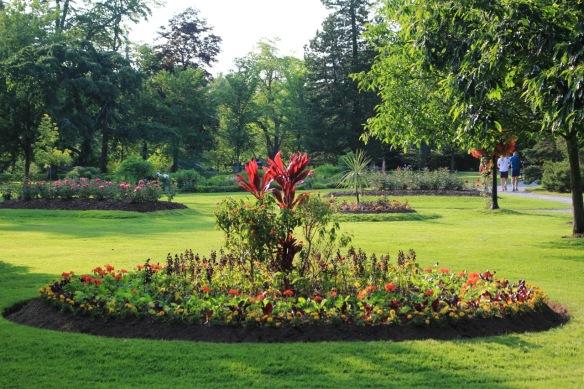 Annual bed at the Halifax Public Gardens containing: Cordyline fruticose (Hawaiian red Ti plant), Lantana standards, salvias, geraniums, marigolds, swiss chard