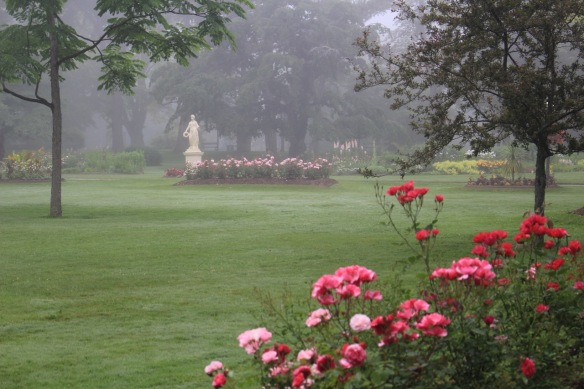 Flora in the fog at the Halifax Public Gardens
