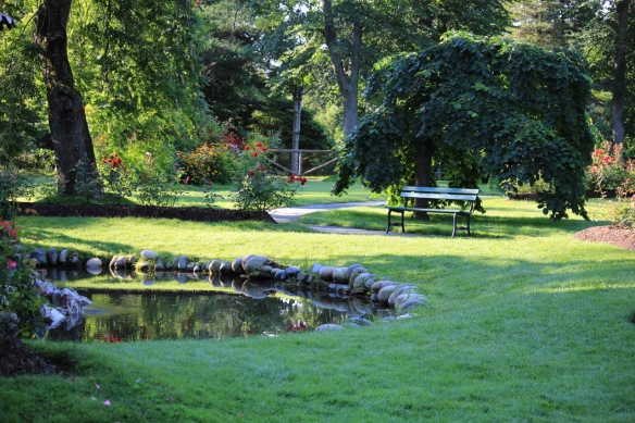 A peaceful corner of the Halifax Public Gardens. Muriel this one's for you.