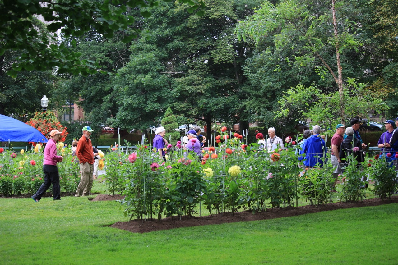 The Friends Of The Public Gardens Along The Gardens Path