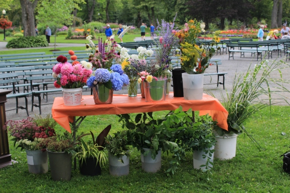 Plants used in the Floral Arrangement Demonstration at Dahlia Day 2015 at the Halifax Public Gardens