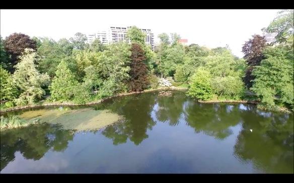 Griffin's Pond at the Halifax Public Gardens.