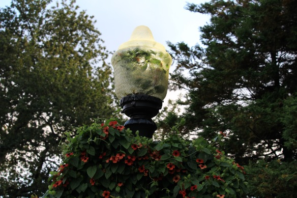 Light posts at the Halifax Public Gardens