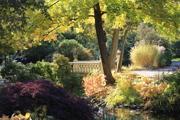 A beautiful fall morning by the Lower Bridge at the Halifax Public Gardens