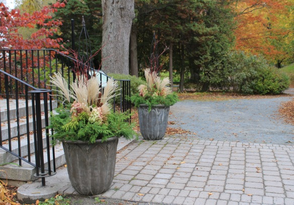 Containers by Horticultural Hall at the Halifax Public Gardens dressed up for fall