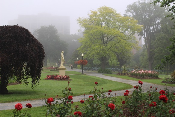 A foggy morning at the Halifax Public Gardens